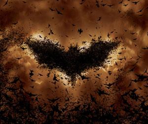 انسان،طبیعت،معماری : رابطه خفاش و معماری
